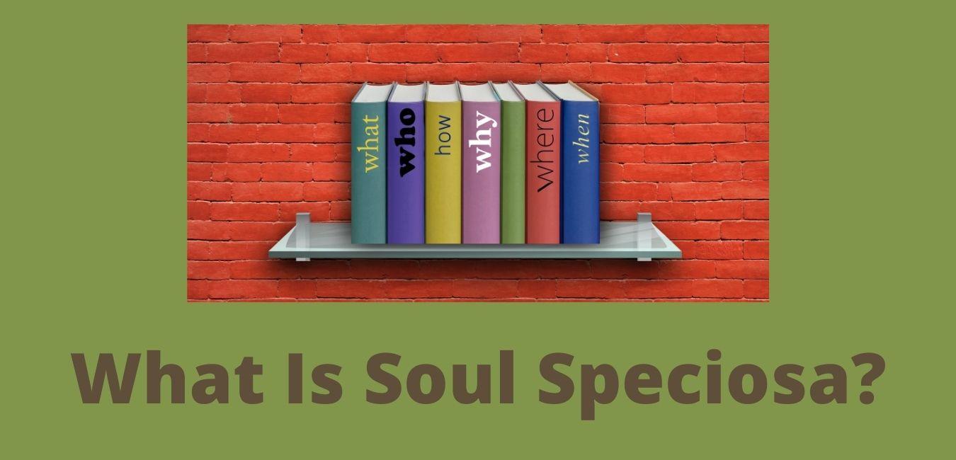 Soul Speciosa